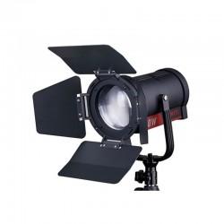 FL-C60D 60W Spot LED