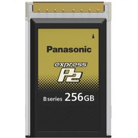 AU-XP0256BG 256GB