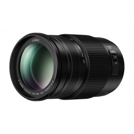 100-300mm F/4.0-5.6 - MFT